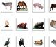 Farm Animals, Real Photo to Symbol Match