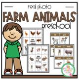 Farm Animals Real Photos