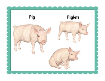 Farm Animals:  Realistic Mini Farm Animal Word Wall Posters