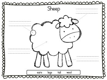 Sheep Farm Animal - Puzzle Parts and Labeling Activity (FREE)