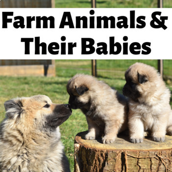 Farm Animals and Their Babies Matching Activity