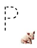 Bilingual Farm Animals Tracing Playdough Mats