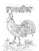 Farm Animals Vocabulary and Coloring sheets for ELLs
