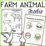 Farm Animals Worksheets Free Download
