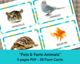 Farm Animals and Pets Flash Cards