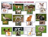 Farm Animals and  Babies - Montessori   Vocabulary Three Part Cards