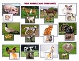 Farm Animals and  Babies - Montessori   Vocabulary Three P