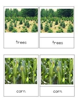 Farm Crops - Montessori Botany