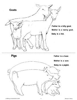 Farm Families (Barnyard Babies)