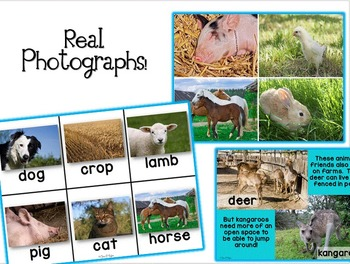 Farm Friends ~ Animals and Farm Balanced Literacy, Informational Unit