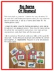 Farm Literacy Centers: Rhyming for preschool, PreK, K & Homeschool