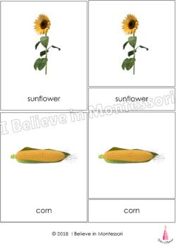 Farm Montessori 3-part Cards