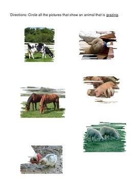 Farm Review (Core Knowledge)