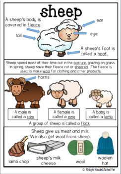Farm Theme: Sheep Poster and worksheets for ELA and Mathematics