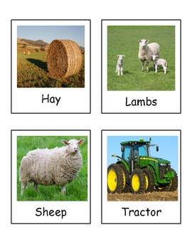 Farm Vocabulary Words (Realia Pictures)