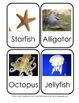 Farm, Zoo & Water Animal flashcards for identification and habitat study