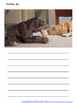 Farm and Pet Animal Picture Stories