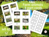 Farm animals Montessori 3 part cards in Arabic