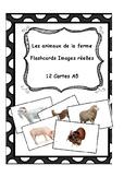 Farm animals flashcards (Real images) - Les animaux de la