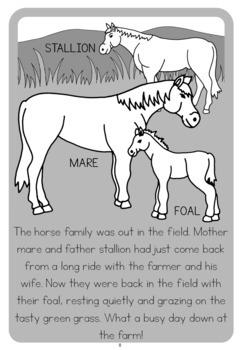 Farm animal families  book