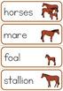 Farm animal families word wall