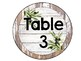 Farmhouse Shiplap Table Number Signs