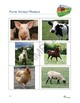 """Farms"" Common Core Aligned Math and Literacy Unit - ACTIVboard EDITION"