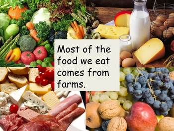 """Farms Nonfiction PowerPoint """"Book"""" for First Grade"""