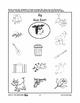 Farmyard Friends - Phonics & Puzzle Activities PreK-K