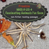 Animals Nonfiction Text Freebie