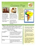 Close Reading - Fast Facts - Guinea Pigs (Includes text dependent questions)