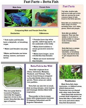 Fast Facts (Animals) - Informational Text Bundle