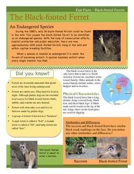 Close Reading - Fast Facts - The Black-footed Ferret