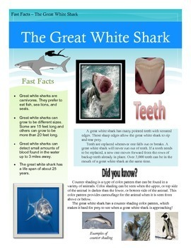 Fast Facts - The Great White Shark