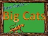 Fast Facts on the Big Cats