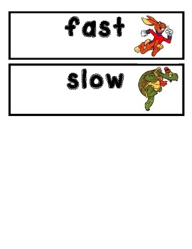 Fast and Slow Science Lesson