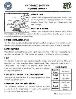 Scorpion - 15 Zoo Wild Resources - Leveled Reading, Slides & Activities