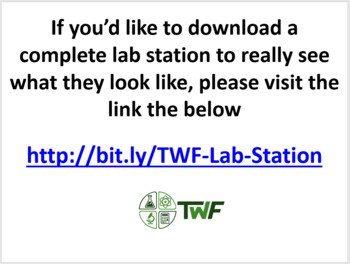 Fats - Lab Station Activity