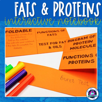 Fats & Proteins Foldable