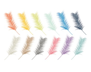 Feather Clipart, Feather, Set #207