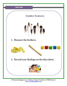 Feather Features Science Center