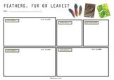 Feather Fur or Leaves Worksheet