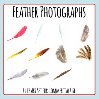 Feather Photos Clip Art Set for Commercial Use