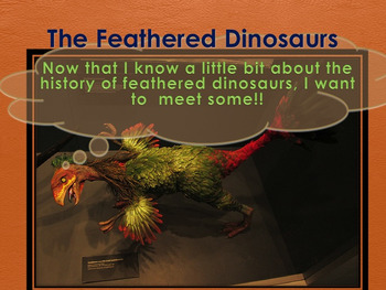 Feathered Dinosaurs - PowerPoint