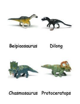 Feathered Dinosaurs Nomenclature