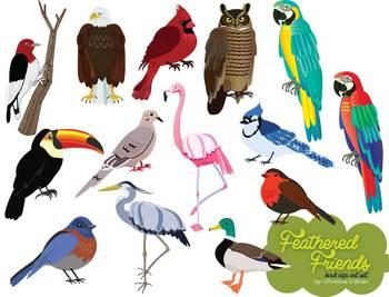 Feathered Friends Bird Clip Art Set