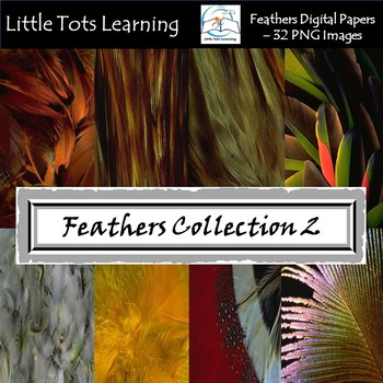 Feathers Digital Papers/Background - Peacock - Tribal Feathers - Set 2