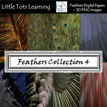 Feathers Digital Papers/Background - Peacock - Tribal Feathers - Set 4