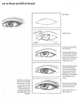 Feathers & Eyes