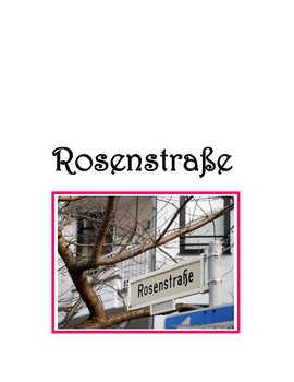 Feature * Film ~ Rosenstraße  (Rosenstrasse)